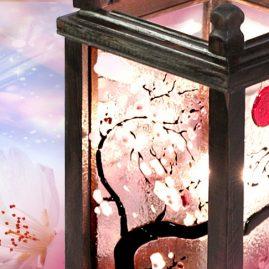 Kolekcja Sakura. BasoLe